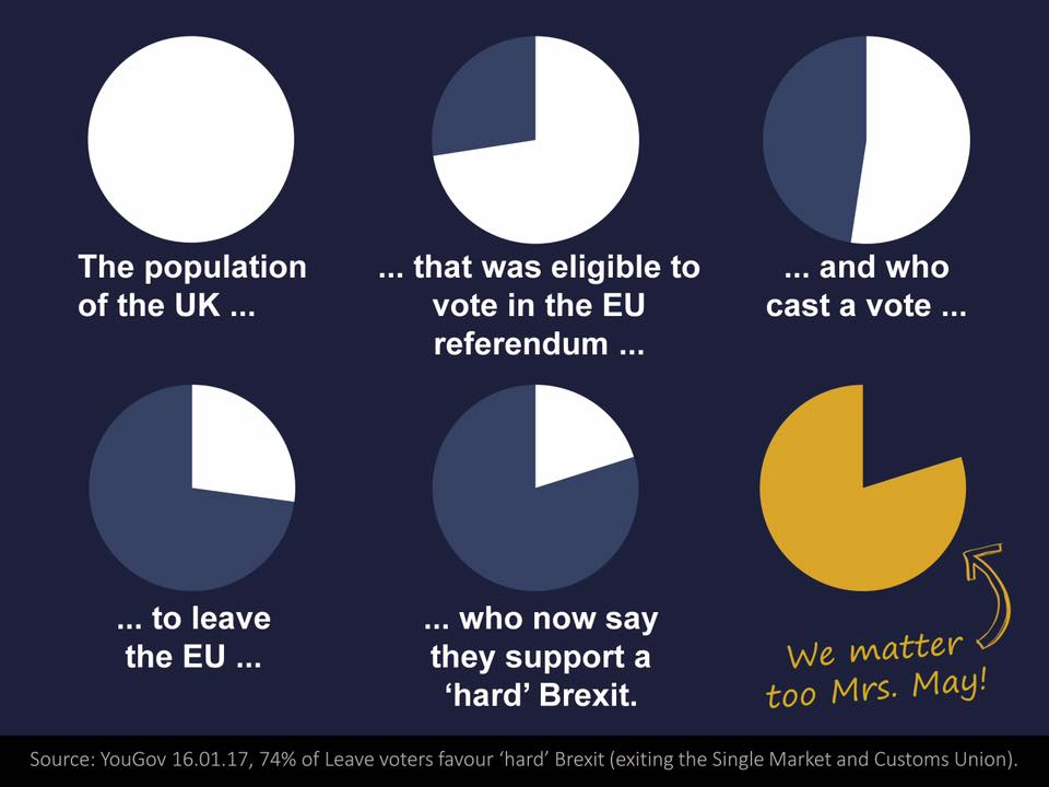 graphic showing proportion of population voting for Brexit as pie chart