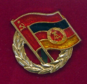 Pin of the DSF